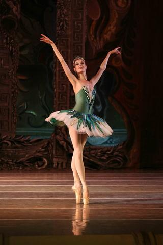 Ballet dancer wallpapers hd apk download apkpure ballet dancer wallpapers hd screenshot 3 voltagebd Image collections