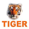 TIGER CCTV icon
