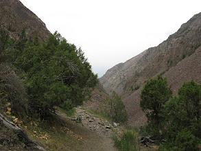 Photo: Tegermach, Yashilkul ravine