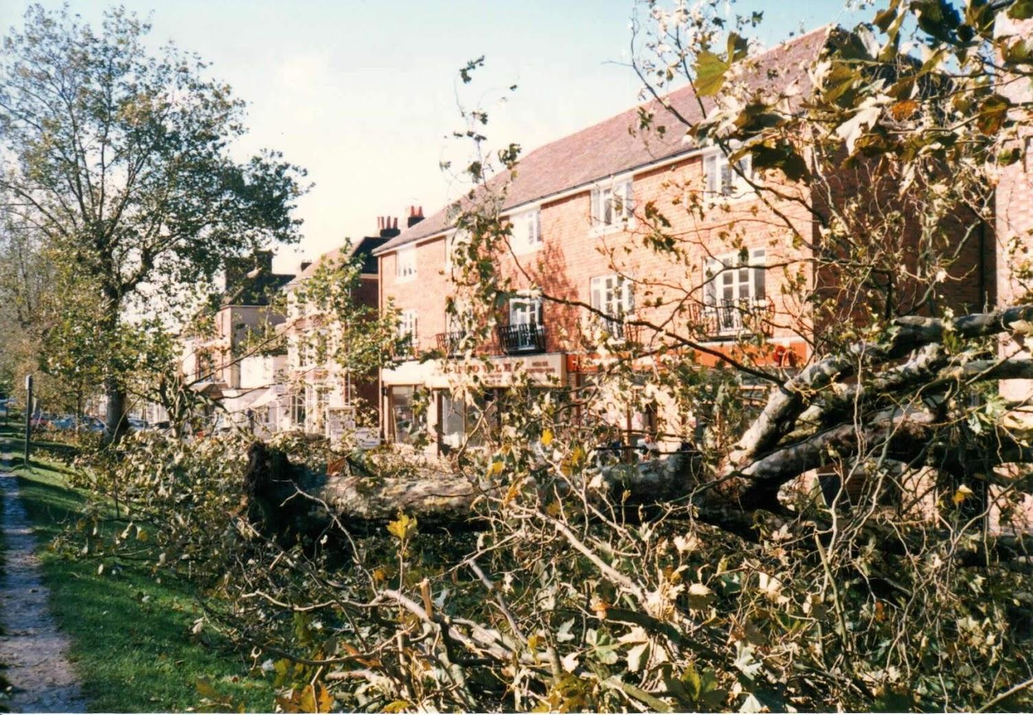 Tenterden Hurricance October 1987