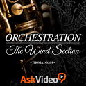 Orchestration: Wind Section icon