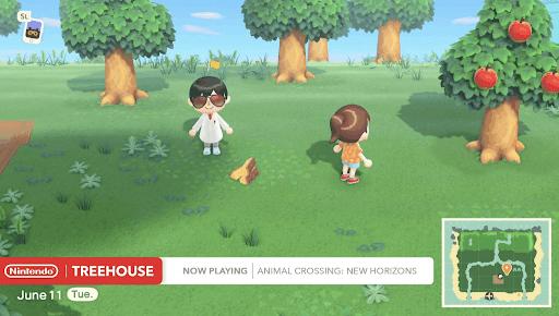 同じ島に住んでいるユーザーと一緒にプレイしている画像