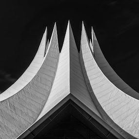 Tempodrom by Daniel Schwabe - Buildings & Architecture Other Exteriors ( b&w, tempodrom, germany, lines, architecture, berlin, curves, geometry )