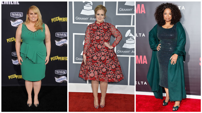 Celeb Plus Size Dress Collage