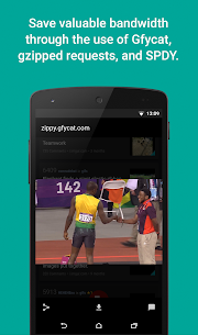Relay for reddit Pro v9.0.14 APK 7