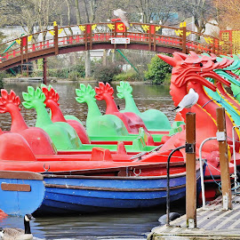 Rowing boat meets dragons  by Eloise Rawling - Transportation Boats ( park scene, park, rowing, boats, dragon, lake, lake scene )