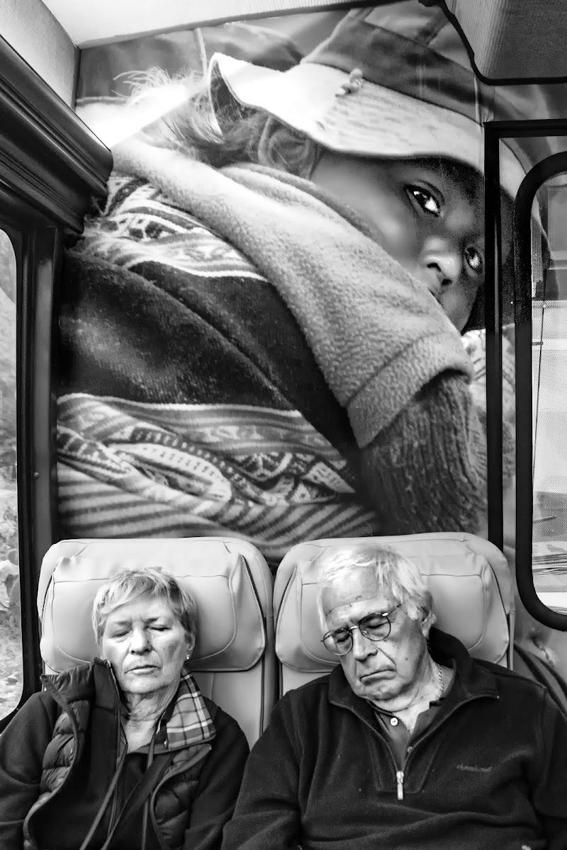 Il sogno di ogni nonno. di alfonso gagliardi