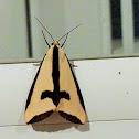 Clymene moth