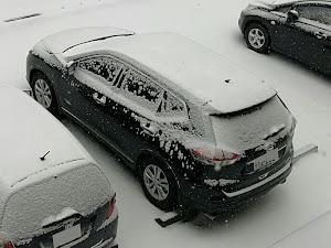 エクストレイル T32 のカスタム事例画像 gaogao さんの2020年02月15日15:51の投稿
