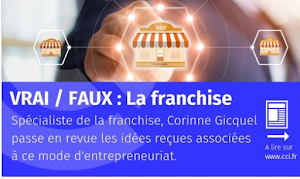 Interview Corinne GICQUEL LA FRANCHISE  CCI DE FRANCE