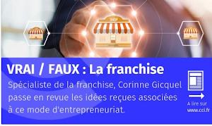 Interview Corinne GICQUEL LA FRANCHISE  CCI DE FRANCE