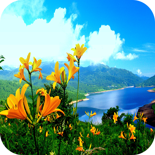 Nature 4k Wallpaper Apps En Google Play