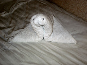 Photo: Towel Seal