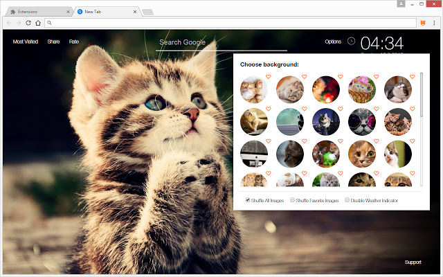 Cute cats kittens wallpaper hd cat themes chrome web store altavistaventures Choice Image