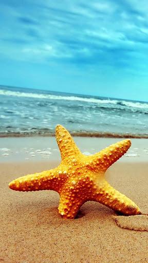 Starfish Lock Slide To Unlock