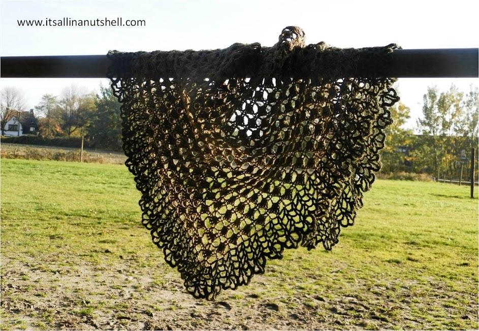 almejas shawl