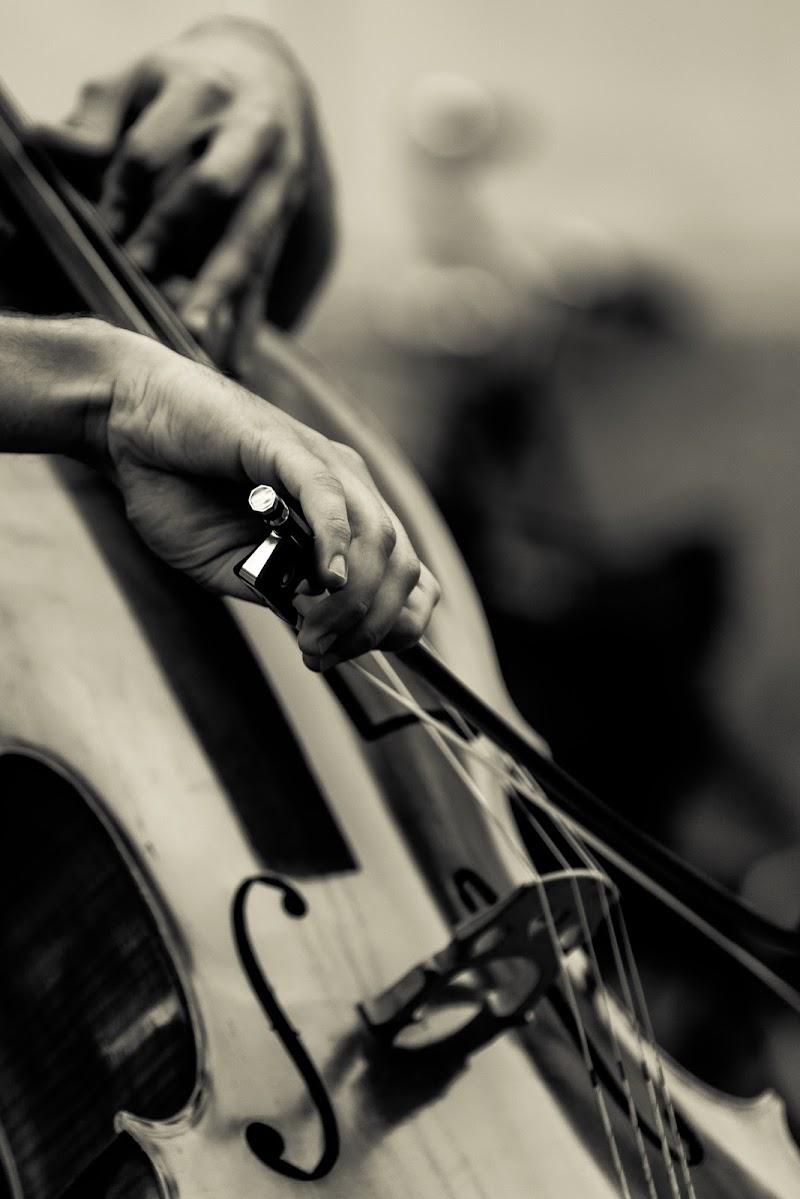 Musica maestro ... di icomo