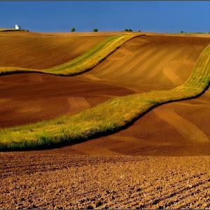 Stripes-P8200030-Z5-PIX.jpg