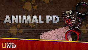 Animal PD thumbnail