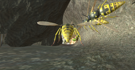Wasp Nest Simulator - Insect and 3d animal game  screenshots 5