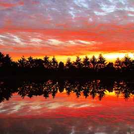 That Predawn Minute by Tina Dare - Landscapes Sunsets & Sunrises ( red, orange, sunrise, reflection, nature, predawn, silhouette, dawn, landscape,  )