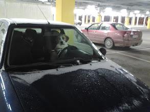 Photo: Minne mennään, sir?