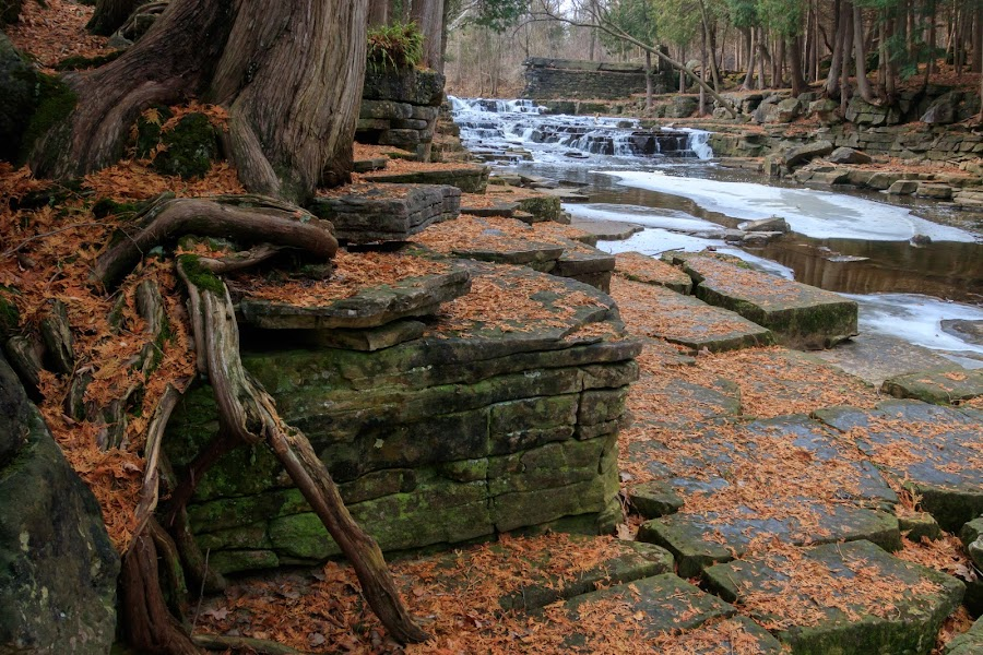 by Kathy Suttles - Nature Up Close Rock & Stone