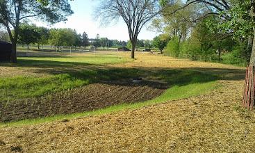 Photo: Restoration & South Bio Retention Pond 05-22-2014