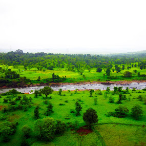 river in greenary by Abhishek Mestry - Landscapes Mountains & Hills ( green, land, forest, beauty, river )