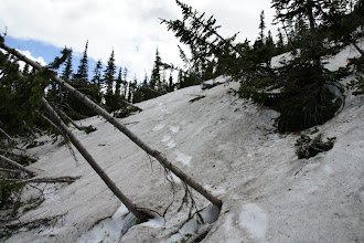 Photo: Avalanche debris covered the trail.