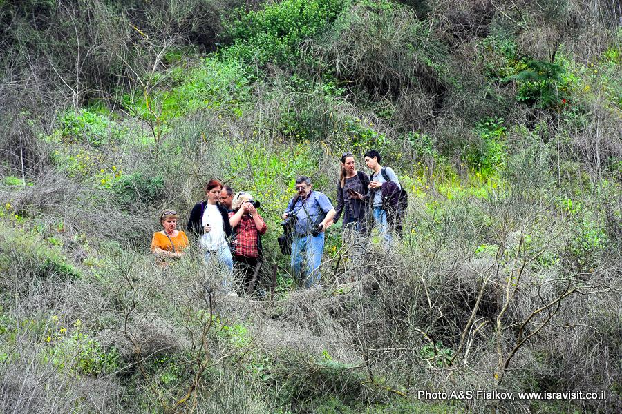 На экскурсии по северу Израиля. Заповедник Нахаль Аюн.