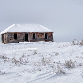 Cold by Dave Bower - Buildings & Architecture Decaying & Abandoned