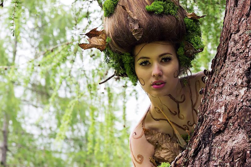 Fata dei boschi di Simone De Barba
