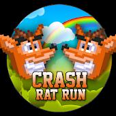 Crash Rat Run