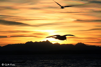 Photo: Der erste Sonnenuntergang 2015 bei Seebruck
