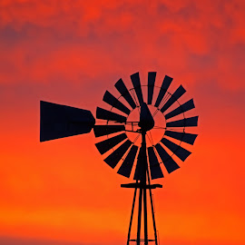 Old Windmill at Sunrise by Bill Diller - Buildings & Architecture Other Exteriors ( calm, sunrise, michigan, windmill, farming, farm, calmness, tranquil, tranquility, colors, peaceful )