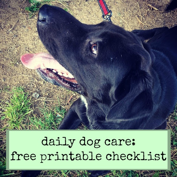 daily dog care free printable checklist until stressed do us part