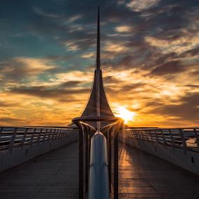 Illuminating Calatrava by James Meyer - Buildings & Architecture Architectural Detail ( milwaukee, wisconsin, jamesmeyerphotography, art museum, wings, art, suspension, architecture, bridge, sunrise, museum, suspended, calatrava, #GARYFONGDRAMATICLIGHT, #WTFBOBDAVIS,  )