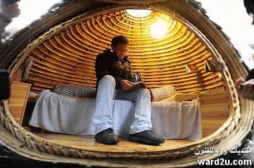 صيني يسكن في بيضة