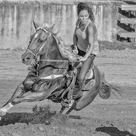 Barrel Racer 3 by Joe Saladino - Black & White Sports ( horse, barrel race, monochrome, girl, rider )