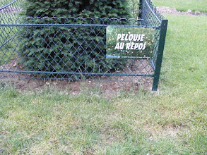 """Photo: Ah, la politesse francaise! Nothing so crass as """"Keep off the Grass,"""" but rather, """"The Lawn is Resting."""""""