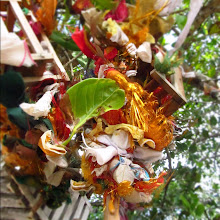 Photo: Lucky trinckets in the trees at the Konesvaram Hindu Temple in Trincomalee.