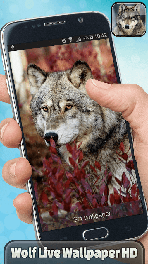 Wolf live wallpaper hd android apps on google play wolf live wallpaper hd screenshot voltagebd Gallery