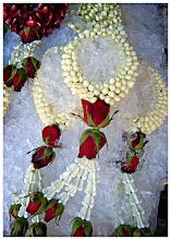 Photo: Flowers on Ice