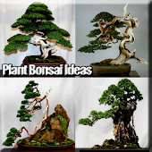 Tải Thực vật Bonsai APK