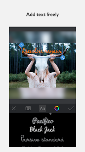 InFrame – Photo Editor & Pics Frame 5
