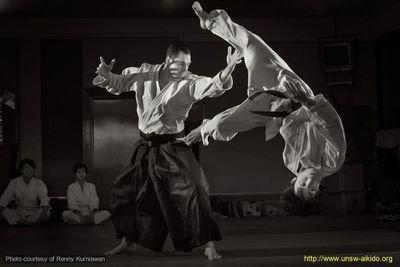 mage result for unsw aikido