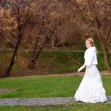 Wedding photographer Svetlana Blinova (BlinovaS). Photo of 19.12.2013