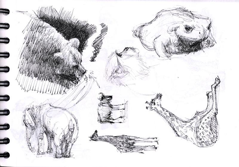 Photo: zoo sketch