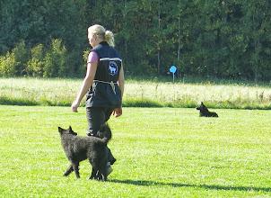 Photo: Veksi seuraa, Miska tarkkaavaisena paikallaolossa